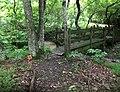 Endview Plantation Bridge Nature Trail Newport News VA USA June 2020.jpg