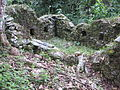 Espiritu Pampa Archaeological site - overgrown house.jpg