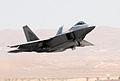 F-22 raptor over flightline - 070903-F-6911G-012.jpg