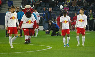 "FC Red Bull Salzburg SCR Altach (März 2015)"" 26.JPG"