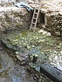 FFM Staufer-Hafen Ausgrabung 2012 k.jpg