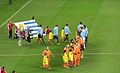 FIFA World Cup 2010 Netherlands Uruguay 5.jpg