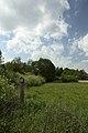 FND Trollblumenwiese und Trockenhang bei Weitenhagen.jpg