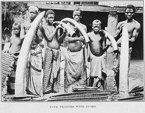 Group of men holding elephant tusks
