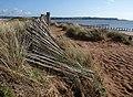 Fence, Dawlish Warren - geograph.org.uk - 1251967.jpg