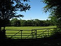 Fields near Capel Llanilltern - geograph.org.uk - 2441653.jpg