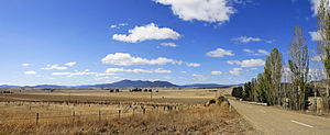 Drought-affected fields in the Victorian count...