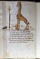 Firenze, silloge di iscrizioni e disegni, giraffa, 1475-1500 ca., cod. ashburnham 1174, 02.JPG