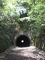 First tunnel of the abandoned railway hike at Takarazuka, Japan.jpg