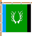 Flag of Zelena (Nadvirna).png