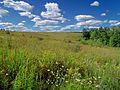 Flickr - Nicholas T - Prairie Walk (3).jpg