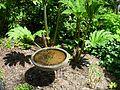 Flickr - brewbooks - Chaotic Water - John M's Garden.jpg