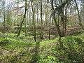 Flint Dell, Basildon Park - geograph.org.uk - 1226943.jpg