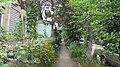 Flowerberd on Ostrovskogo st. August 2014. - Клумбы на улице Островского. Август 2014. - panoramio.jpg