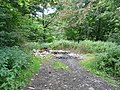 Fly Tipping - geograph.org.uk - 890208.jpg