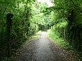 Footpath behind Longbridge Road - geograph.org.uk - 863476.jpg
