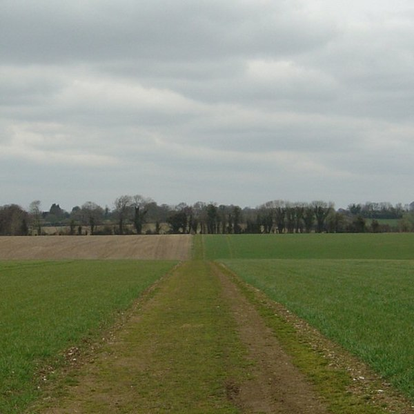 File:Footpath between Street End and Upham - geograph.org.uk - 136015.jpg