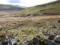 Footpath in Afon Hengwm valley - geograph.org.uk - 413073.jpg