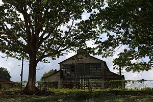 Fordlândia - The main warehouse at Fordlândia.