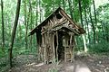 Forest-House.jpg