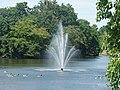 Fountain in the lake in Raphael Park, taken from Main Road bridge ^2 - geograph.org.uk - 1946443.jpg