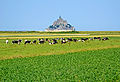 France-000866 - First View of Mont Saint-Michel (14939083169).jpg