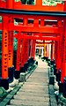 Fushimi Inari-Taisha - panoramio (1).jpg