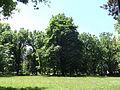 Futoski Park-Novi Sad3.jpg