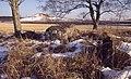 Gånggrift (RAÄ-nr Gökhem 19-1) + Holöja storhög (RAÄ-nr Gökhem 21-1) 189-29.jpg
