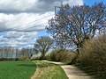 GOC Willian & Weston Hills 013 Letchworth Garden City Greenway (20699963066).jpg