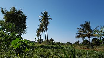 GVSR Farm.jpg