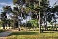 Gallecs - panoramio.jpg
