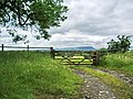 Gate - geograph.org.uk - 477435.jpg