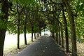 Gdansk Oliwa Park - panoramio (4).jpg