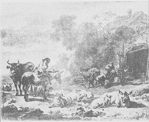 Herders and Herd
