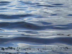 File:Gentle ripples (video).webm
