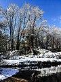Georgia snow IMG 4806 (27170205789).jpg