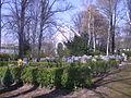 Gera Friedhof Langenberg 2.jpg