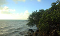 Gfp-florida-keys-tavernier-key-sea-view-at-tavernier-key.jpg