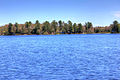 Gfp-michigan-twin-lakes-state-park-across-the-lake-shoreline.jpg
