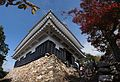 Gifu Castle , 岐阜城 - panoramio (7).jpg