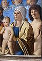 Giovanni bellini, madonna col bambino tra i ss. pietro e sebastiano, 1487 ca., 03.JPG