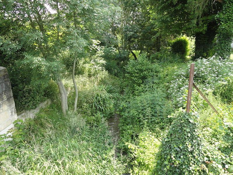 La Petite Guenelle (partie haute de la Guenelle) à Glannes (Marne).