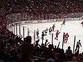 Goal, Detroit Red Wings, Pittsburgh Penguins Bench, Detroit Red Wings vs. Pittsburgh Penguins, Joe Louis Arena, Detroit, Michigan (21515643170).jpg