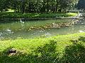 Gradski Park-Skopje (104).JPG