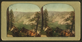 Grand Canon of the Yellowstone, from Robert N. Dennis collection of stereoscopic views.png