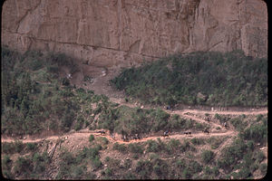 Grand Canyon National Park GRCA4237.jpg