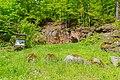 Granitporphyr von Thal Heiligenstein 02.jpg