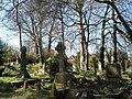 Gravestones in Christ Church Churchyard - geograph.org.uk - 732017.jpg