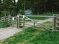 Gribdale Gate - geograph.org.uk - 1332094.jpg